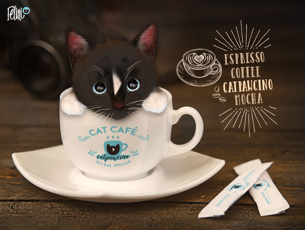 Coffee Kitten, cat+cappucino = Catpawcino