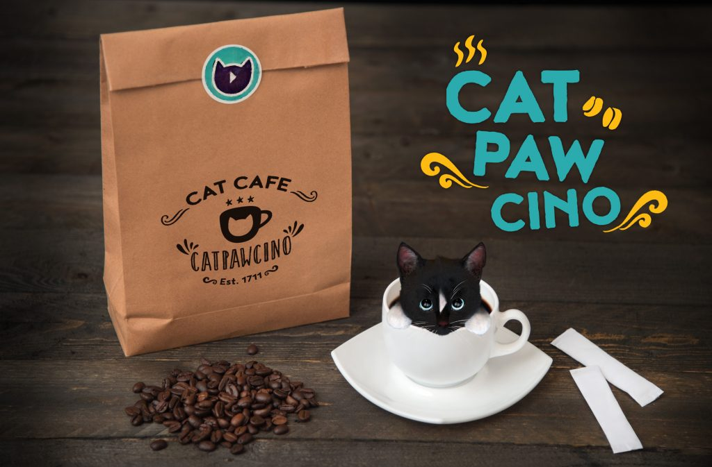 Cat paw cino with Felini the cat