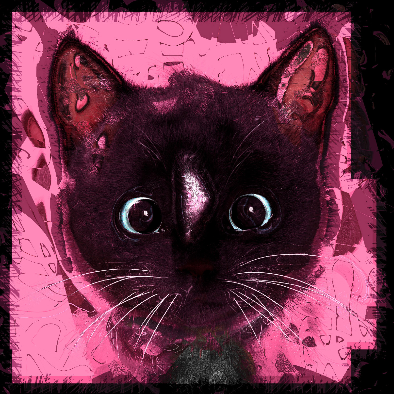 Feline cat chemistry with Felini the Cat