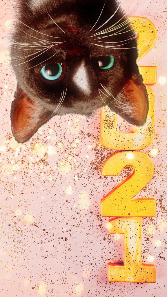 Black Cat Felini with year 2021 written in golden letters, glitter and lights in the air