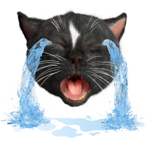 Felini the Kitty Emoji making a Loudly Crying Face with waterfalls of tears